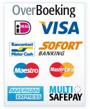 Beveiligd online betalen met MultiSafePay